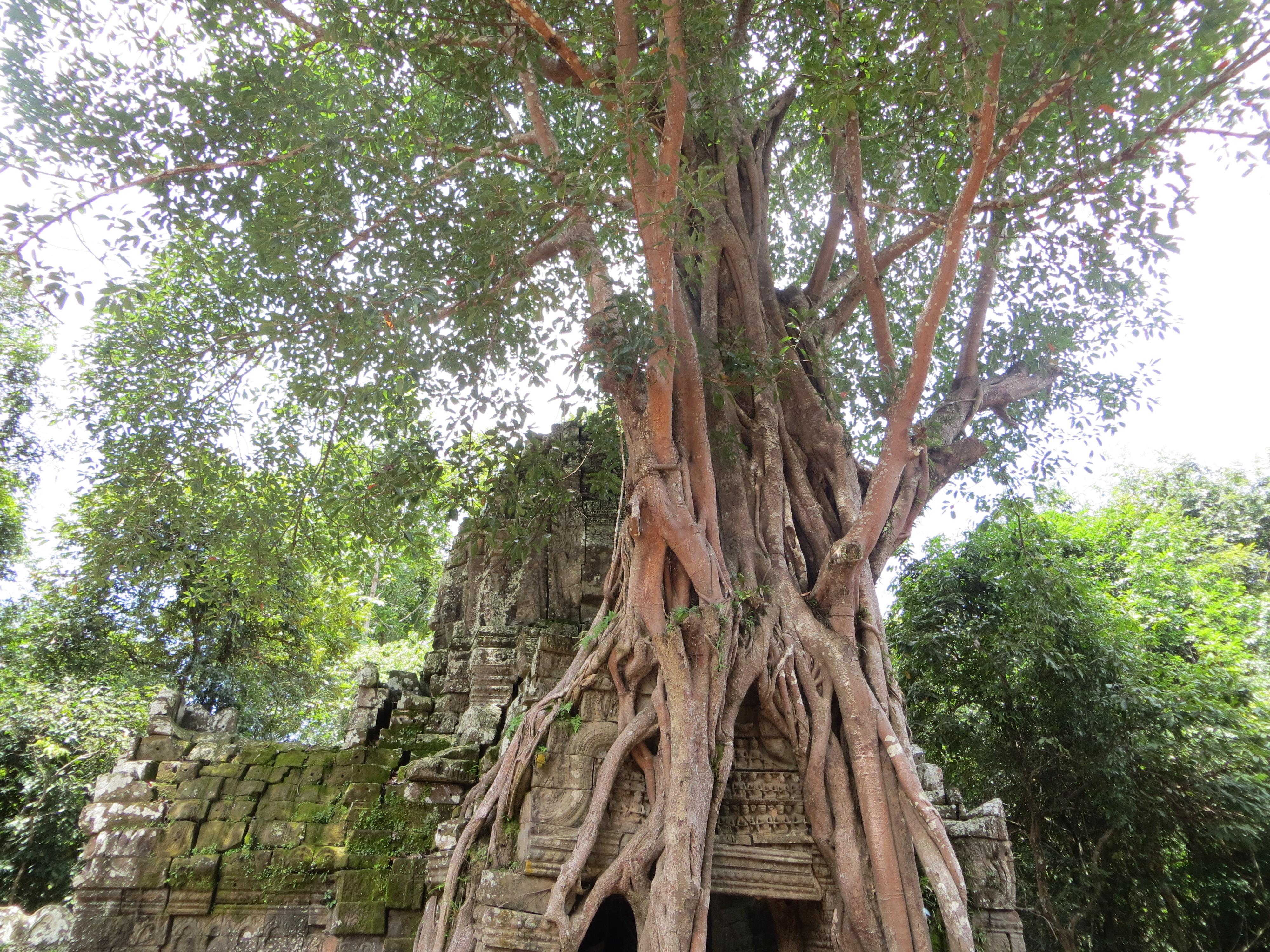 Ta-Som-Angkor-wat-Cambogia