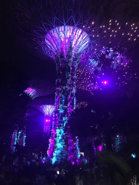 gardens-rapsody-singapore